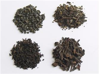 Nejběžnější typy čaje: nahoře zelený aoolong, dole černý apu-erh. Foto: Martin Archalous