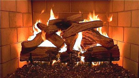 Hořící dřevo vkrbu uklidňuje ašetří peníze. Dřevo patří knejlevnějším palivům užívaným pro vytápění.